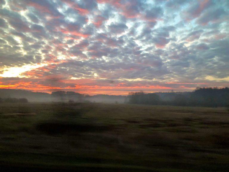 dawn-near-Birkenau